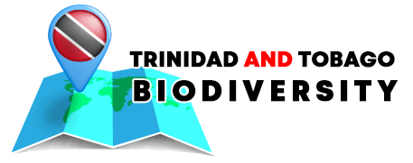 Trinidad and Tobago Biodiversity